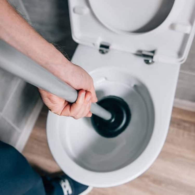 clogged toilets